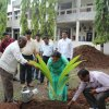 Tree Plantation at RIT on 1st July 2016